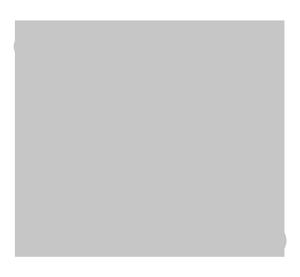 Den Nationale Tolkemyndighed